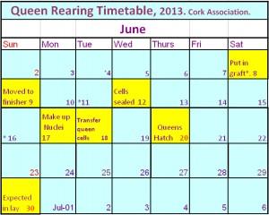 QR timetable