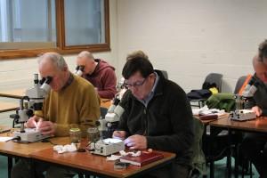 Microscopy workshop 2_3