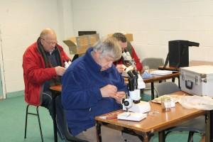 Microscopy workshop 2_4